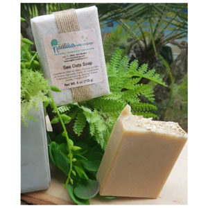 Sea Oats: features finely ground oatmeal for exfoliation. Now made with coconut milk!